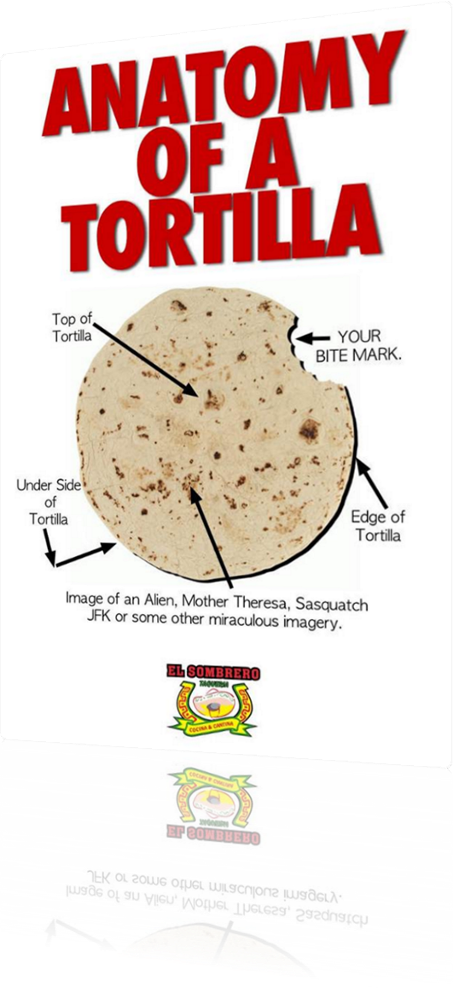 Vign_anatomy_of_a_tortilla